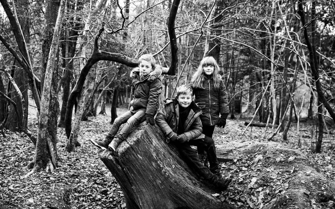 WINTER FAMILY PHOTOSHOOT AT LONGLEAT FOREST, WILTSHIRE